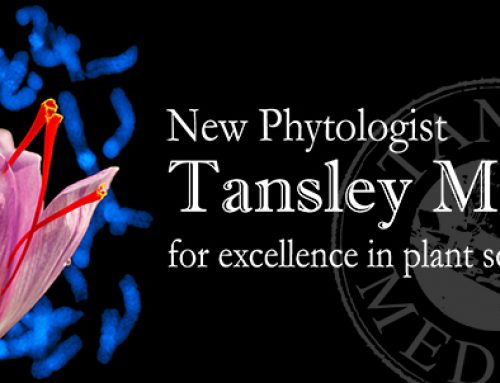 Kai awarded New Phytologist Tansley Medal